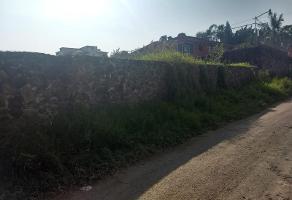 Foto de terreno habitacional en venta en conocida , 3 de mayo, emiliano zapata, morelos, 10177099 No. 01