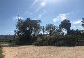 Foto de terreno industrial en venta en baja california , alfredo v bonfil, benito juárez, quintana roo, 6576705 No. 01