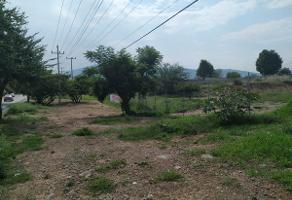 Foto de terreno habitacional en renta en  , banus, tlajomulco de zúñiga, jalisco, 8896639 No. 01