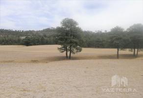 Foto de terreno habitacional en venta en  , barrancas, chihuahua, chihuahua, 0 No. 01