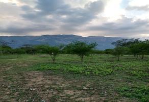Foto de terreno habitacional en venta en barrial , el barrial, santiago, nuevo león, 0 No. 01