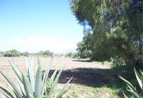 Foto de terreno habitacional en venta en barrio de san miguel 0, san marcos, zumpango, méxico, 0 No. 01