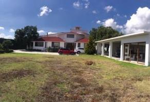 Foto de casa en venta en barrio las ventas , san juan tilcuautla, san agustín tlaxiaca, hidalgo, 14071850 No. 01