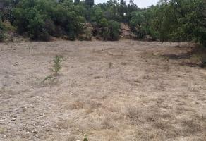 Foto de terreno habitacional en venta en barrio san miguel manzana , san miguel, tequixquiac, méxico, 12183518 No. 01