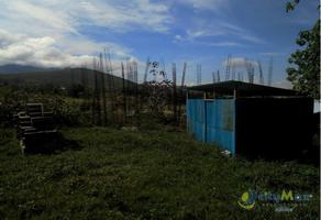 Foto de terreno comercial en venta en  , barrio vista hermosa, san agustín etla, oaxaca, 16237787 No. 01