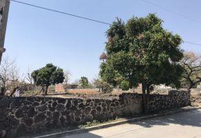 Foto de terreno habitacional en venta en 13 de Septiembre, Yautepec, Morelos, 7623514,  no 01