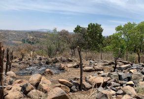 Foto de terreno habitacional en venta en Los Laureles, El Salto, Jalisco, 15138829,  no 01