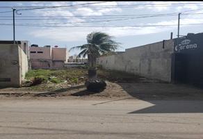 Foto de terreno habitacional en venta en  , belisario domínguez, carmen, campeche, 17003767 No. 02