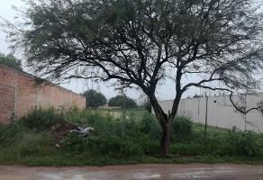 Foto de terreno habitacional en venta en benito diaz , corral de barrancos, jesús maría, aguascalientes, 0 No. 01
