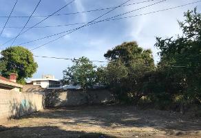 Foto de terreno habitacional en venta en benito juarez , ampliación unidad nacional, ciudad madero, tamaulipas, 11030926 No. 01