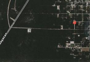 Foto de terreno habitacional en venta en  , juárez, benito juárez, quintana roo, 9426266 No. 01