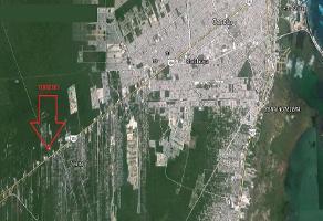 Foto de terreno habitacional en venta en  , juárez, benito juárez, quintana roo, 11285178 No. 01
