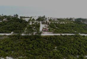 Foto de terreno habitacional en venta en  , juárez, benito juárez, quintana roo, 11285222 No. 01