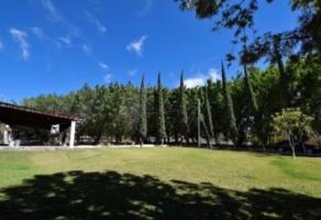 Ranchos En Cajititlán Tlajomulco De Zúñiga Jali