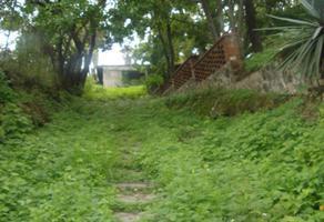 Foto de terreno habitacional en renta en  , benito juárez (centro), cuernavaca, morelos, 0 No. 01