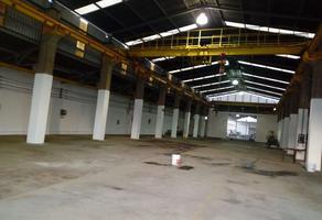 Foto de nave industrial en renta en  , benito juárez centro, juárez, nuevo león, 14734710 No. 01