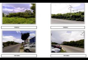 Foto de terreno habitacional en venta en  , juárez, benito juárez, quintana roo, 6518440 No. 01