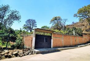 Foto de terreno habitacional en venta en  , benito juárez, zacapu, michoacán de ocampo, 0 No. 01