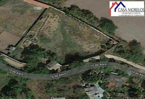 Foto de terreno habitacional en venta en  , benito juárez, zacatepec, morelos, 0 No. 01