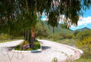 Foto de terreno habitacional en venta en bernal , bernal, ezequiel montes, querétaro, 17728876 No. 01