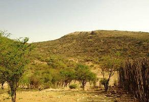 Foto de terreno habitacional en venta en  , bernal, ezequiel montes, querétaro, 8050933 No. 01