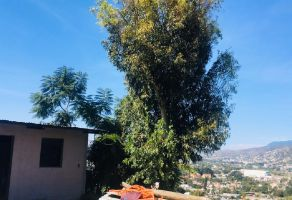 Foto de terreno habitacional en venta en San Juan Chapultepec, Oaxaca de Juárez, Oaxaca, 13215107,  no 01