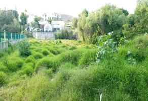 Foto de terreno habitacional en venta en bosque de puente viejo , mirador de la cañada, zapopan, jalisco, 0 No. 01