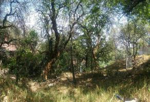 Foto de terreno habitacional en venta en bosques de framboyanes , bosque de las lomas, miguel hidalgo, df / cdmx, 0 No. 01