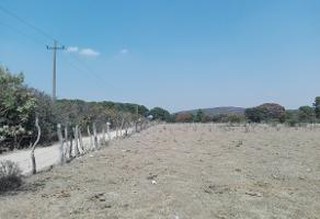 Foto de terreno habitacional en venta en  , bosques de la primavera, zapopan, jalisco, 10853395 No. 01