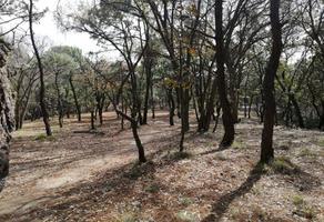 Foto de terreno habitacional en venta en  , bosques de la primavera, zapopan, jalisco, 12532602 No. 01
