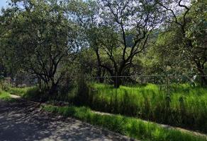 Foto de terreno habitacional en venta en  , bosques de las lomas, cuajimalpa de morelos, df / cdmx, 13913484 No. 01