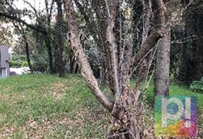 Foto de terreno habitacional en venta en  , bosques de las lomas, cuajimalpa de morelos, df / cdmx, 9869633 No. 01