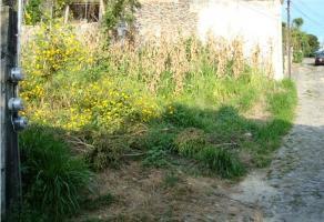 Foto de terreno habitacional en venta en  , bosques de palmira, cuernavaca, morelos, 9333549 No. 01