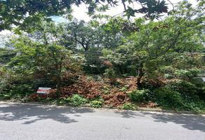 Foto de terreno habitacional en venta en  , bosques de san ángel sector palmillas, san pedro garza garcía, nuevo león, 16380330 No. 01