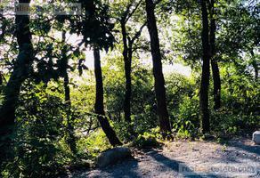 Foto de terreno habitacional en venta en  , bosques de san ángel sector palmillas, san pedro garza garcía, nuevo león, 18484201 No. 01