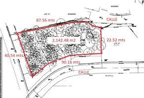 Foto de terreno habitacional en venta en  , bosques de san ángel sector palmillas, san pedro garza garcía, nuevo león, 19404613 No. 01
