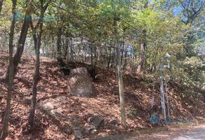 Foto de terreno habitacional en venta en  , bosques de san ángel sector palmillas, san pedro garza garcía, nuevo león, 0 No. 01