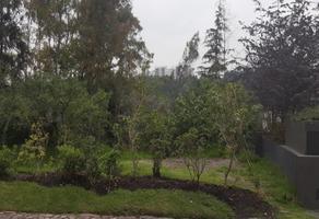 Foto de terreno habitacional en venta en bosques de santa fe , santa fe cuajimalpa, cuajimalpa de morelos, df / cdmx, 0 No. 01
