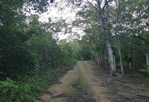 Foto de terreno habitacional en venta en bosques del caribe 0 , cancún centro, benito juárez, quintana roo, 0 No. 01