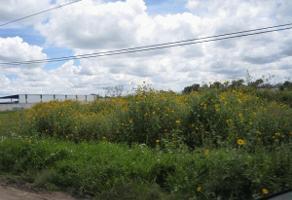 Foto de terreno industrial en venta en boulevard bernardo quintana 20, villas de san josé (ampliación la piedad), el marqués, querétaro, 0 No. 06