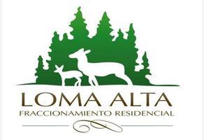 Foto de terreno habitacional en venta en boulevard loma alta 300, loma bonita, arteaga, coahuila de zaragoza, 0 No. 01