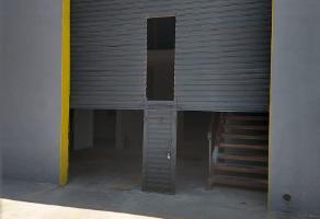 Foto de nave industrial en renta en boulevard oscar flores , parque industrial intermex aeropuerto, chihuahua, chihuahua, 6688101 No. 03