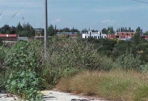 Foto de terreno habitacional en renta en boulevard ramón martín huerta ctra. 80 , los lagos, san juan de los lagos, jalisco, 4027061 No. 05