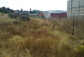 Foto de terreno habitacional en venta en brasil sn , villa alta, tepetitla de lardizábal, tlaxcala, 0 No. 01