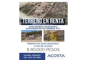 Foto de terreno comercial en renta en  , brisas del pacifico, los cabos, baja california sur, 0 No. 01