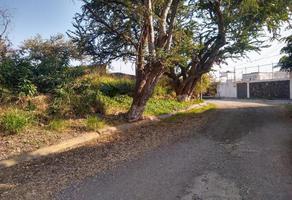 Foto de terreno habitacional en venta en  , brisas, temixco, morelos, 0 No. 01