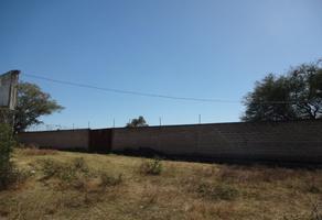 Foto de terreno habitacional en venta en buenavista 3, buenavista, ixtlahuacán de los membrillos, jalisco, 0 No. 01