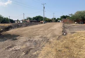 Foto de terreno habitacional en venta en buenavista , buenavista tomatlán, buenavista, michoacán de ocampo, 18624324 No. 01