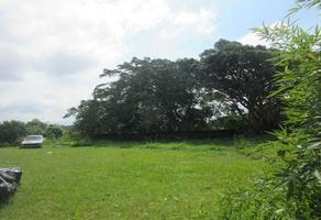 Foto de terreno habitacional en venta en  , buenavista, cuernavaca, morelos, 0 No. 01