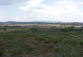 Foto de terreno comercial en venta en  , buenavista, ixtlahuacán de los membrillos, jalisco, 10979837 No. 01